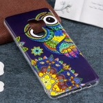 For Samsung Galaxy S9+ Noctilucent Ethnic Owl Pattern TPU Soft Back Case Protective Cover, Small Quantity Recommended Before Sam
