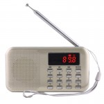 Y-896 Portable LCD stéréo numérique FM Radio AM haut-parleur, batterie Li-ion rechargeable, Support Micro TF carte / USB / MP...