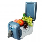 NFA5251 4L 42W Mini Car Refrigerator Electric Cooler / Warmer