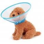 Elizabeth Pet Collar Headgear Ruff Funnel Cover Anti Bite Lick Safety Practical Neck Protective, Size: XL, Suitable for Neck 30-