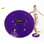 Aerobic Exercise Fitness Magnet Wriggling Waist Disk Twist Board, Size: 25*3cm(Purple)
